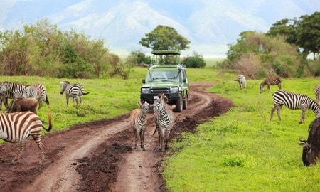4days budget camping private safari lake manyara serengeti ngorongoro phxW2.jpg